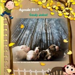 Agenda klein bull terrier friends Jadoul, Candy