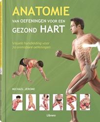 Anatomie van oefeningen voor een gezond -Visuele handleiding voor 70 on misbare oefeningen Jerome, Michael