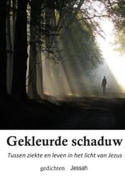 Gekleurde schaduw -Tussen ziekte en leven in het licht van Jezus Groenink, Jessah