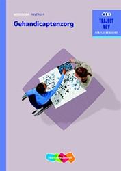 Gehandicaptenzorg -traject V&V Schrijver, R.F.A.