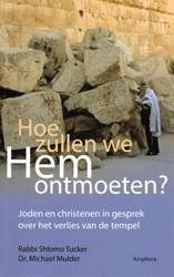 Hoe zullen we Hem ontmoeten? -joden en christenen in gesprek over het verlies van de tempe Mulder, Michael