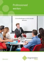 Angerenstein Welzijn Professioneel werke -generiek