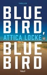 Bluebird, bluebird Locke, Attica