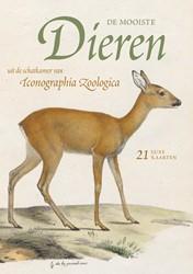 De mooiste dieren uit de schatkamer van -21 luxe kaarten Iconographia Zoologica