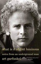 What Is It All but Luminous -Notes from an Underground Man Garfunkel, Art