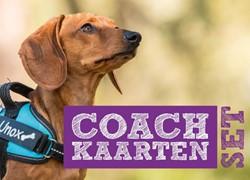 Coachkaartenset -Coachkaarten om slapende honde n wakker te maken! Kok, Iris