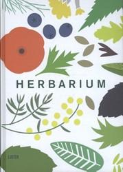 HERBARIUM Hildebrand, Caz
