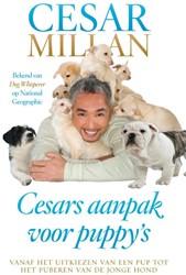 Cesars aanpak voor puppy's -AANPAK VOOR PUPPY'S Millan, Cesar