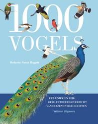 1000 vogels -een uniek en rijk geillustree rd overzicht van duizend vogel Hoggett, Sarah