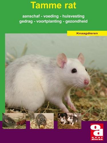 De tamme rat -voeding, verzorging, aanschaf, huisvesting, voortplanting, g