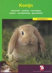 Over Dieren Het konijn