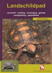 Over Dieren De landschildpad
