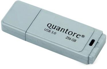 USB-STICK QUANTORE FD 256GB 3.0 ZILVER -HUISMERK COMPUTERTOEBEHOREN QUANFD256GBBLK3.0