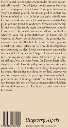 De vlucht naar voren -roman Houten, Boudewijn van-2