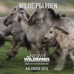 Wilde Paarden kalender -de nieuwe wildernis