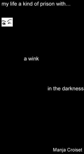 A wink in the darkness -my life of prison or my life b ehind invisible bars my autobi Croiset, Manja