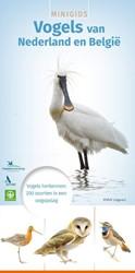 Minigids vogels van Nederland en Belgie -vogels herkennen: 200 soorten in een oogopslag Louwe Kooijmans, Jip
