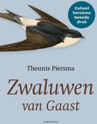 Zwaluwen van Gaast Piersma, Theunis