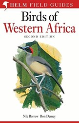 Birds of Western Africa Borrow, Nik