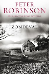 DCI Banks 4 : Zondeval Robinson, Peter