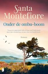 Onder de ombu-boom -Tussen de ongetemde Sofia en h aar neef Santi groeit meer dan Montefiore, Santa