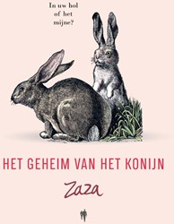 Zaza, het geheim van het konijn Zaza