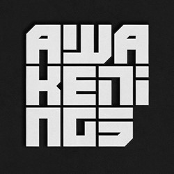 Awakenings -20 Years Of Techno Terphoven, Arne van