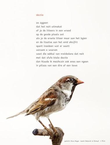 Plint Poezieposter 'Dectie' Ha Hagen, Hans & Monique