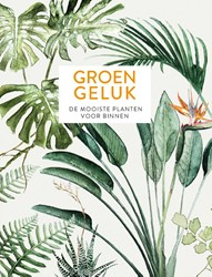 Groen geluk -de mooiste planten voor binnen Sibley, Emma