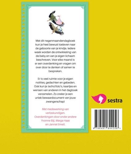 Verwachtingsvol -negenmaandendagboek Lunteren, Esther van-2