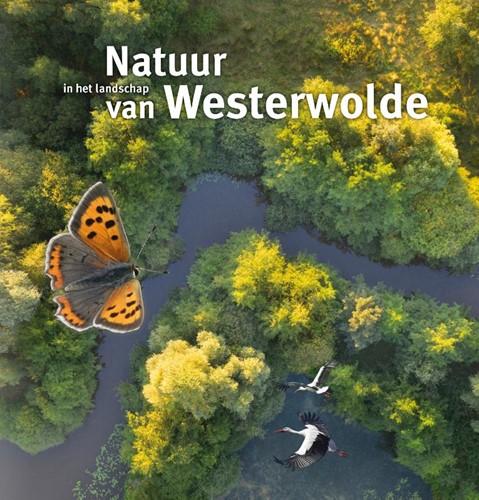 Natuur in het landschap van Westerwolde