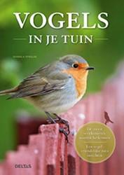 Vogels in je tuin -de meest voorkomende soorten h erkennen - een vogelvriendelij Strauss, Daniella