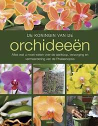 De koningin van de orchideeen Pinske, Jorn
