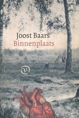 Binnenplaats Baars, Joost
