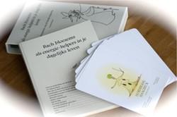 Bach Bloesems als energie-helpers in je -energetische visie & helen oepassing Reniers, Veronika