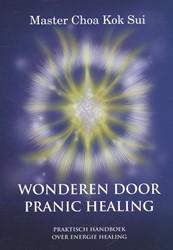 Wonderen door Pranic Healing -praktische handleiding over en ergie healing Kok Sui, Choa