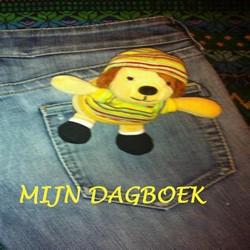 MIJN DAGBOEK GRAAF, P.F. DE