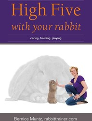 HIGH FIVE WITH YOUR RABBIT -CARING, TRAINING, PLAYING MUNTZ, BERNICE