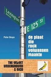 De plaat die rock volwassen maakte -the Velvet Underground & N Bruyn, Peter