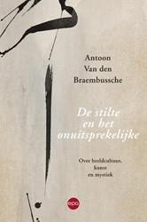 De stilte en het onuitsprekelijke -over beeldcultuur, kunst en my stiek Braembussche, Antoon Van den