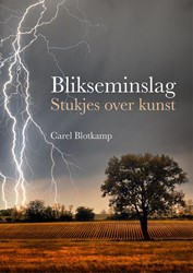 Blikseminslag -Stukjes over kunst Blotkamp, Carel