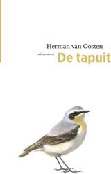 De tapuit Oosten, Herman van