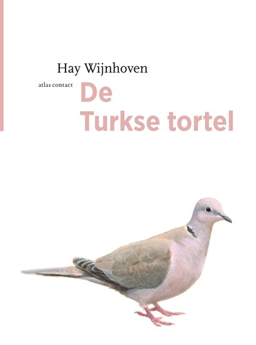 De Turkse tortel Wijnhoven, Hay