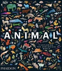 Animal: Exploring the Zoological World Phaidon Editors