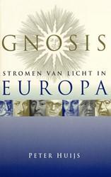 Gnosis, stromen van licht in Europa Huijs, P.F.W.