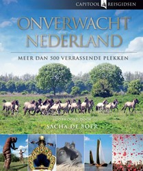 Capitool Onverwacht Nederland -meer dan 500 verrassende plekk en Hendriksen, Bartho