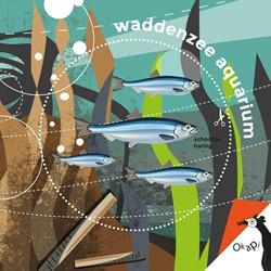 Okapi Waddenzeeaquarium (set van 5) -knippenvouwenplakken Sportel, Lisa