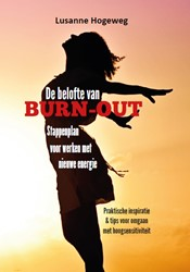 De belofte van burn-out -Stappenplan voor werken met ni euwe energie Hogeweg, Lusanne