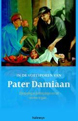 In de voetsporen van pater Damiaan -Zijn roeping en zending dagen ons uit om mee te gaan Van Hilst, Luc