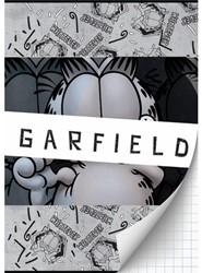 SCHRIFT GARFIELD BOYS A4 RUIT -SCHOOL ARTIKELEN 8712048293161